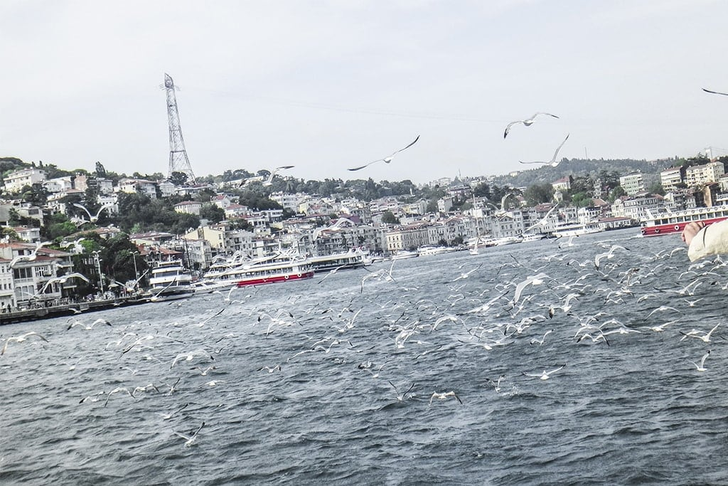 Istanbul Cruising Down The Bosphorus Strait