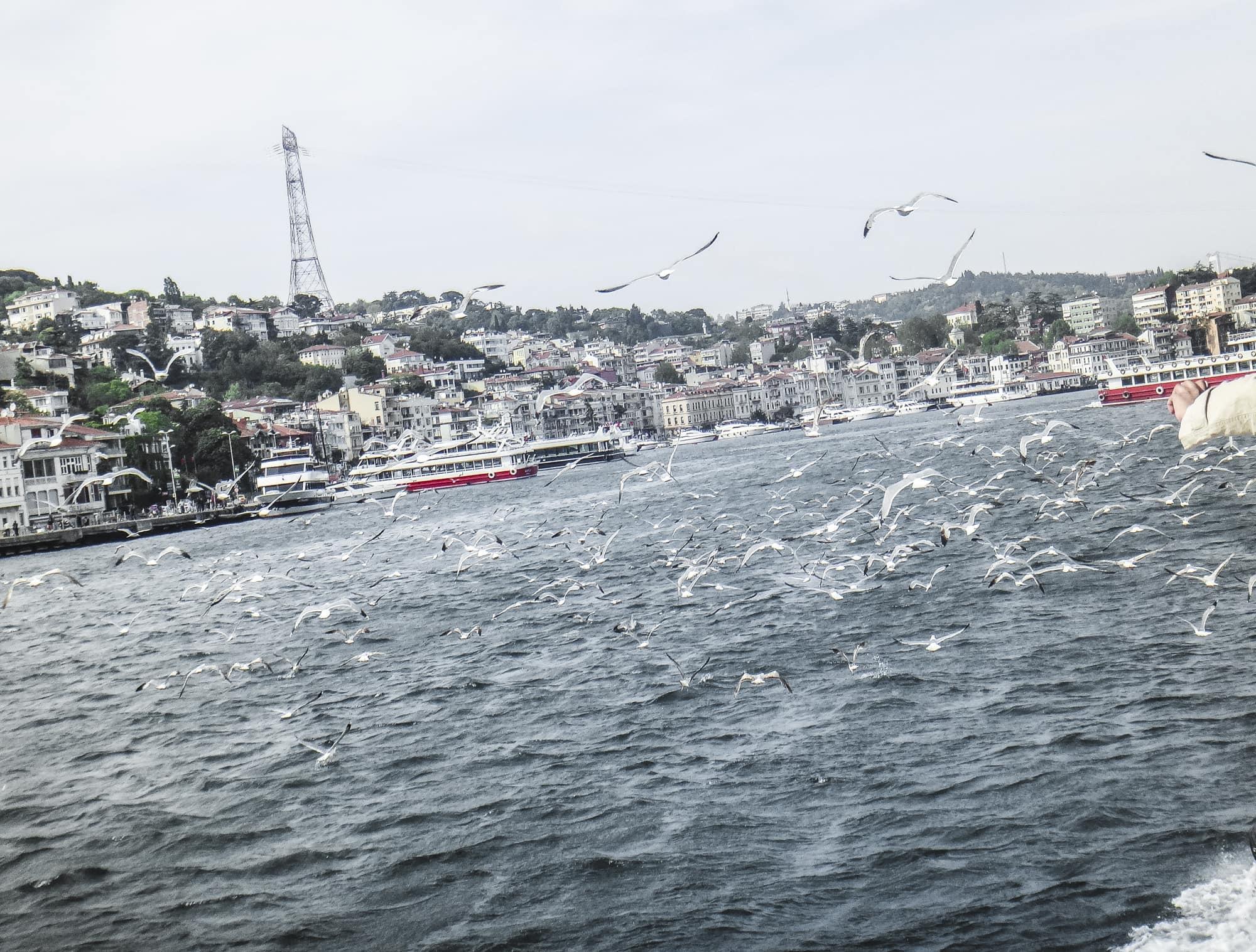 Bosphorus Strait (Istanbul, Turkey)