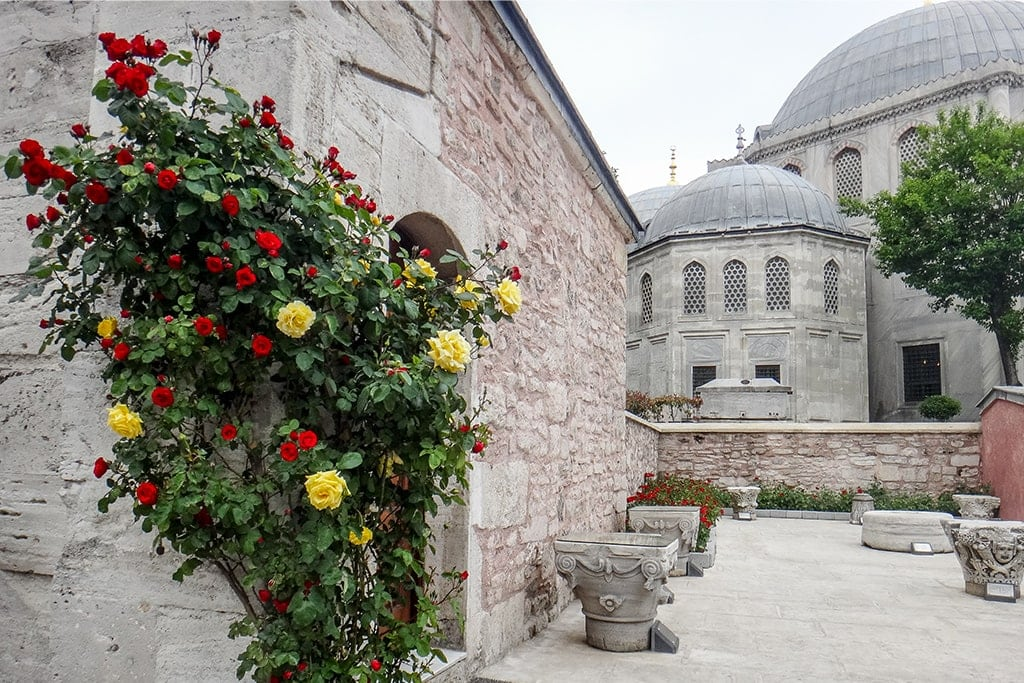 Istanbul Travel Diaries   Delightful and Charming